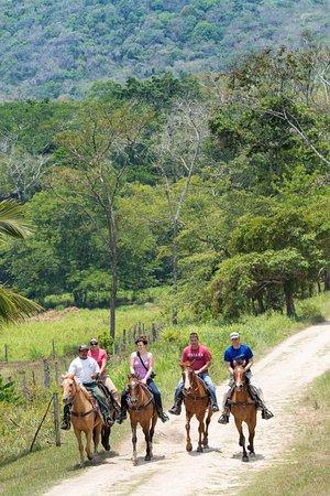 Hidden Valley Inn: Horseback riding in the Mountain Pine Ridge