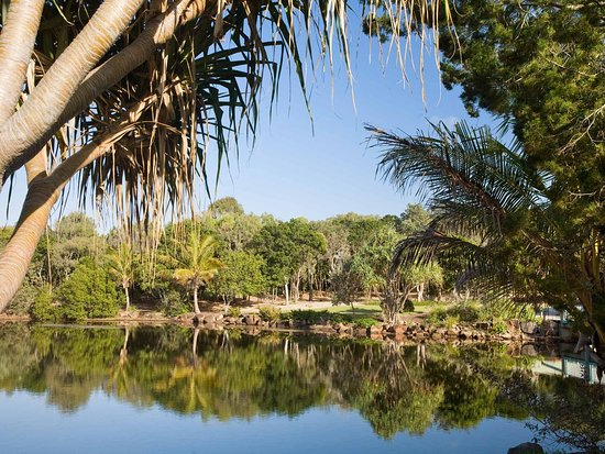 Mudjimba, Australia: Other