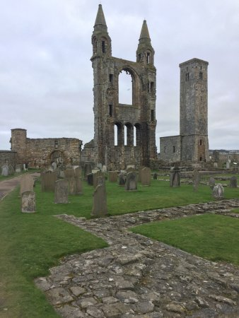 St Andrews Cathedral: photo1.jpg
