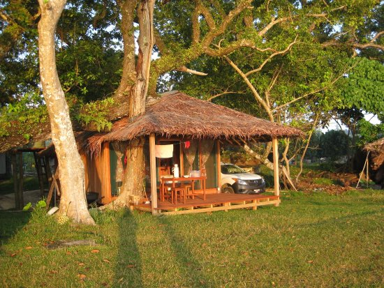 Little Paradise Bungalow Resmi