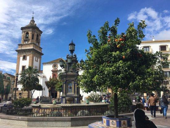 Plaza Alta : photo0.jpg