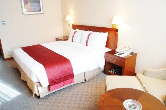 Holiday Inn Seongbuk Seoul: Standard Room