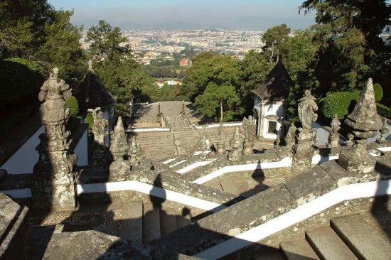 Ibis Braga: Other