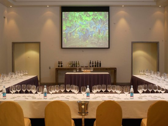 Grand Hyatt Santiago: Wine Tasting