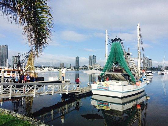 Gold Coast Fishermen's Cooperative