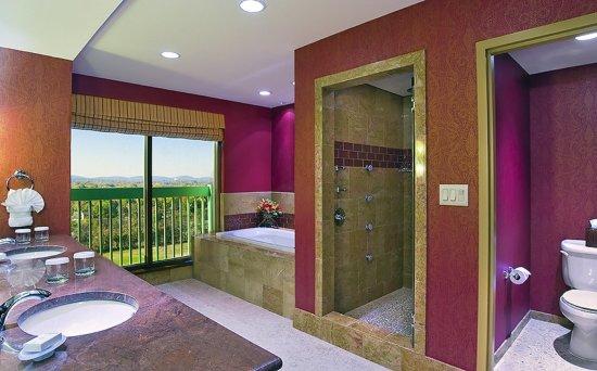 Murfreesboro, TN: Executive Nonsmoking Suite Bathroom