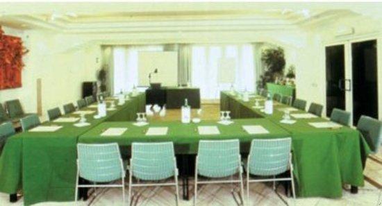 Hotel Aris Garden: Conference