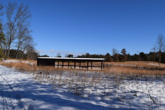 Wilton Wildlife Preserve and Park