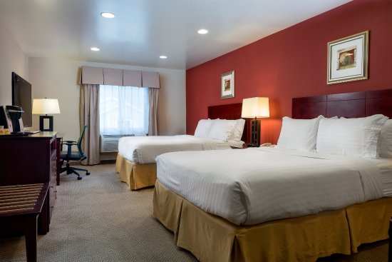 Holiday Inn Express Hotel & Suites Los Angeles Airport Hawthorne: Guest Room