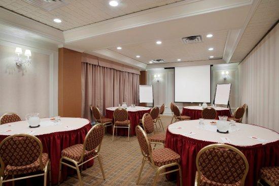 Ramada St. John's: Meeting Room