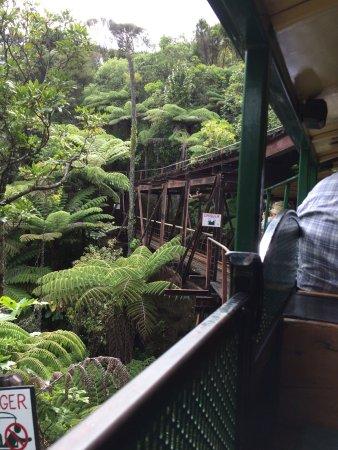 Коромандел, Новая Зеландия: photo0.jpg