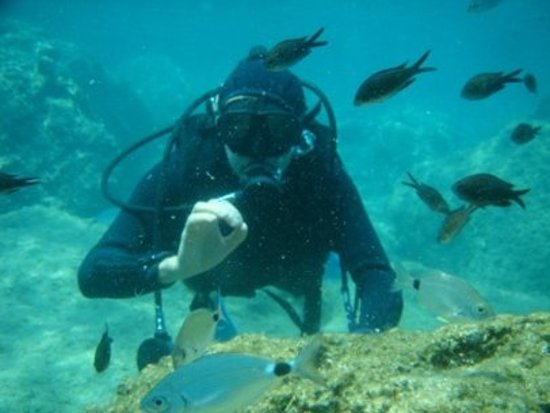 Benner, St. Thomas: Scuba Diving