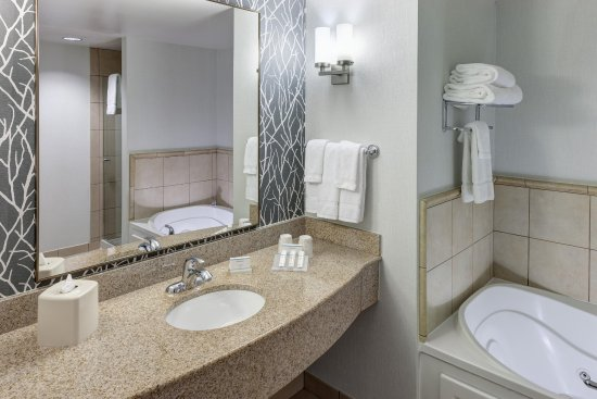 Lake Forest, Илинойс: Deluxe Suite Bathroom
