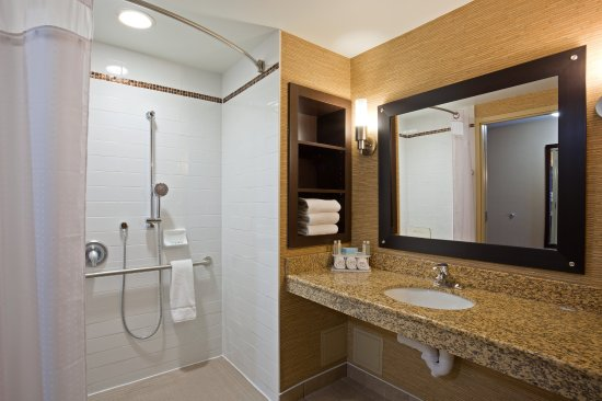 Holiday Inn Express Hotel & Suites Woodstock: Wheelchair Accessible Guest Bathroom