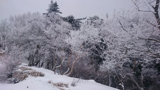 Koshu, Japão: 頂上付近
