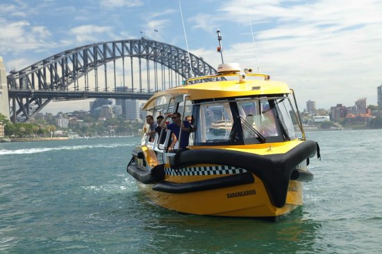 Fantasea Yellow Water Taxis