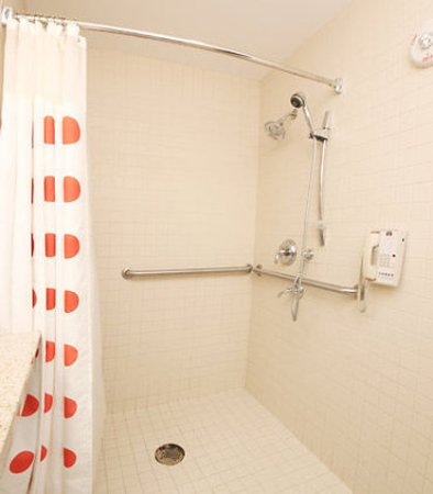 TownePlace Suites Albany Downtown/Medical Center: Accessible Bathroom