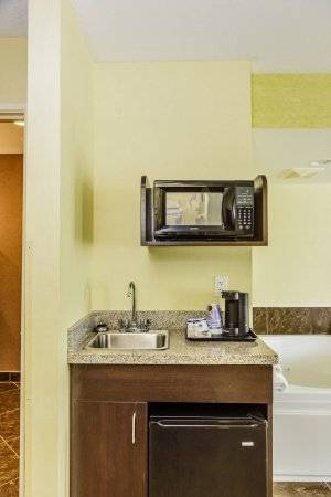 Hamburg, NY: Kitchenette in King Bed Suite