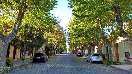 Avenida General Flores