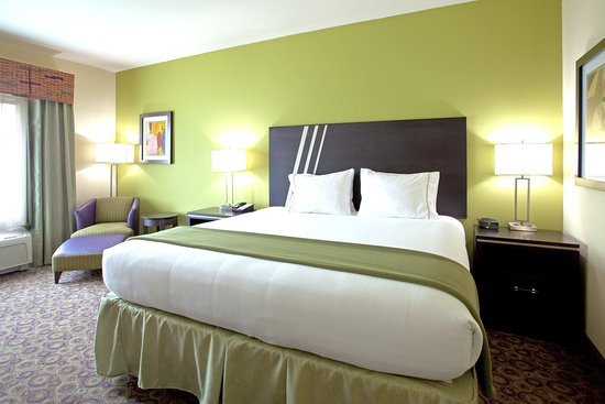 Holiday Inn Express Hotel & Suites Clemson - Univ Area: King Bed Guest Room