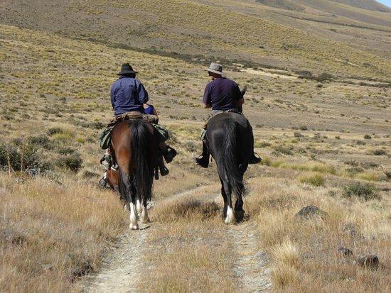 Waimate, Selandia Baru: Hitting the trail again