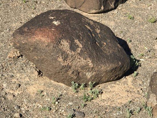 Gila Bend, Arizona: photo3.jpg