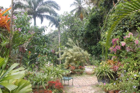 Saint Joseph Parish, باربادوس: garden scenery