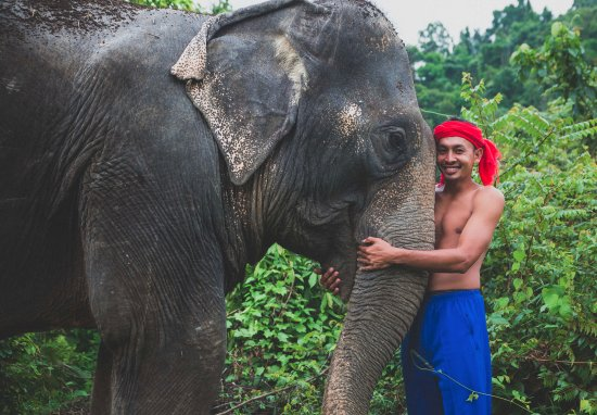 Phang Nga, Thailand: Mahout Jut and his girl Saw-jan