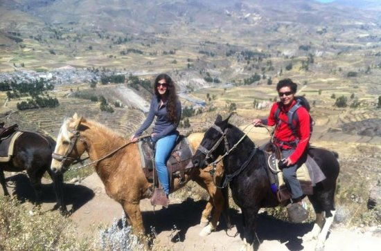 Colca Canyon 2-Day Tour from Arequipa...