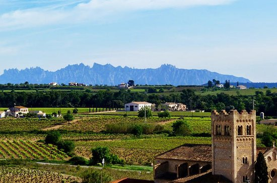 Private Montserrat and Penedes Day...