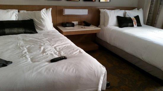 Washington Court Hotel on Capitol Hill: Camas
