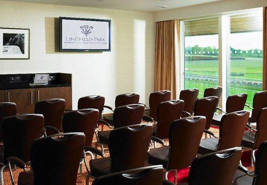 Lingfield, UK : Batemans Suite