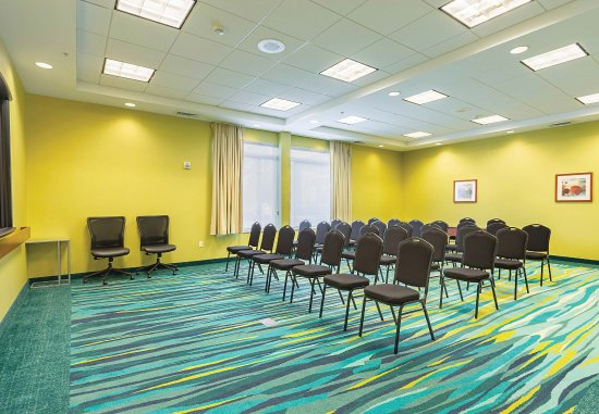 SpringHill Suites Tampa North/I-75 Tampa Palms: Meeting Room