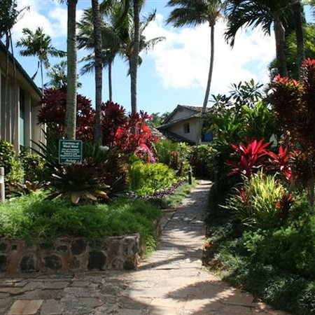 The Gardens at West Maui Hotel: Resort Grounds
