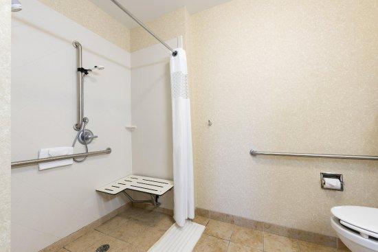 Clinton Township, MI: Accessible Guest Room Bath