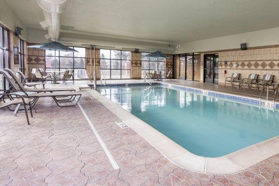 Clinton Township, MI: Swimming Pool