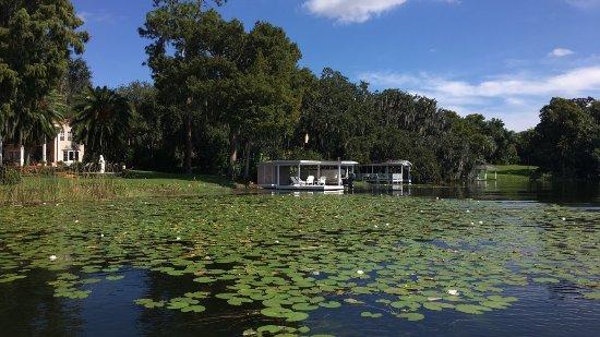 Winter Park, FL: photo4.jpg