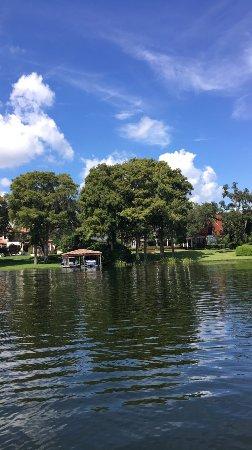 Winter Park, FL: photo6.jpg