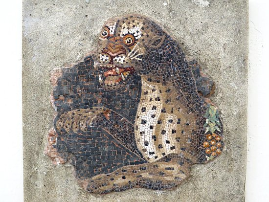 Archaeological Museum of Delos : モザイクが綺麗に残っている