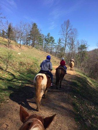 Marshall, Carolina del Norte: More trails
