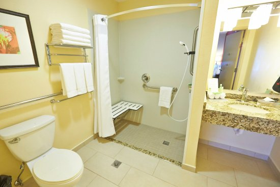 Guest Bathroom Ideas With Pleasant Atmosphere: Holiday Inn Express El Caney Lodge On Fort Buchanan (An