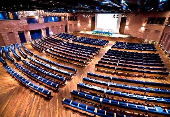Castelvecchio Pascoli, Italia: Conference Centre Auditorium