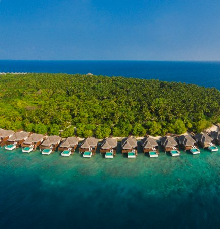 Dusit Thani Maldives: Landscape View