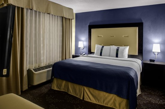 Holiday Inn Indianapolis North/Carmel: Room with King Bed and Sleeper Sofa