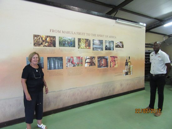 Phalaborwa, Südafrika: Amarula guide