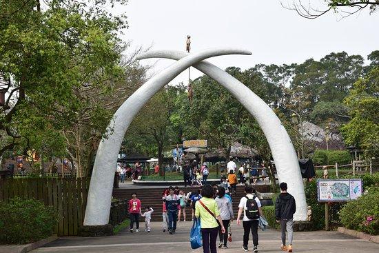 Hsinchu County, Taiwán: African Safari