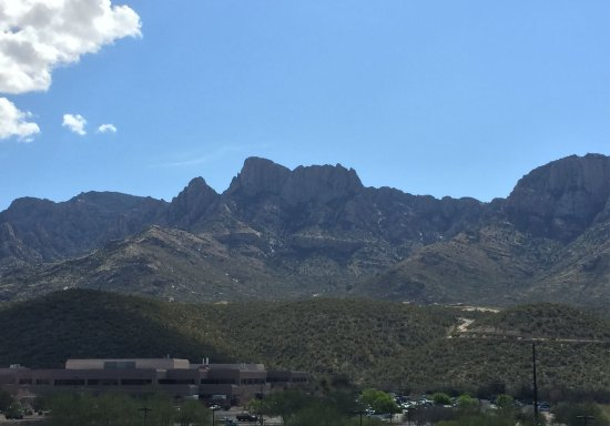 Oro Valley, AZ: View from Room