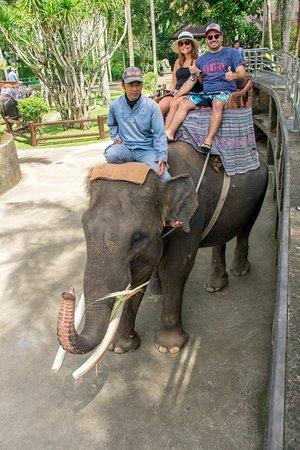 Agus Bali Private Tours