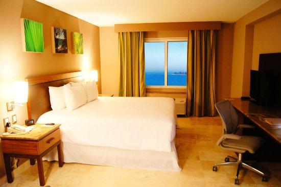 Hilton Garden Inn Boca del Rio Veracruz: Accessible Guest Room