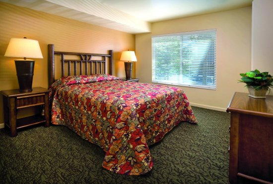 WorldMark Wolf Creek: Studio Suite Bedroom